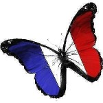 French Teacher for Professionals, TEFAQ & Students 20$/Hr