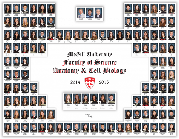 2014-2015 Science---Anatomy-and-Cell-Biology