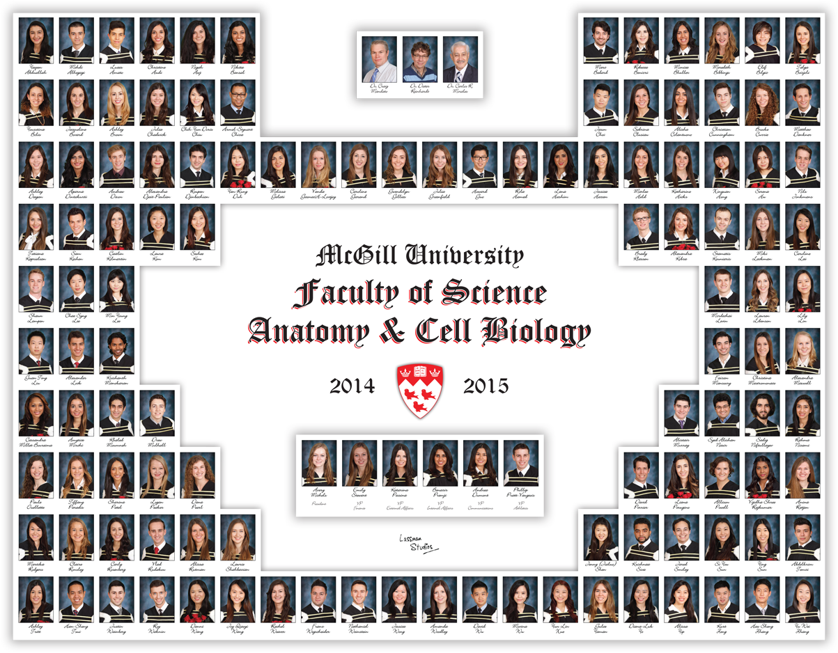 Graduation Class Mosaic 2014-2015 - Students\' Society of McGill ...