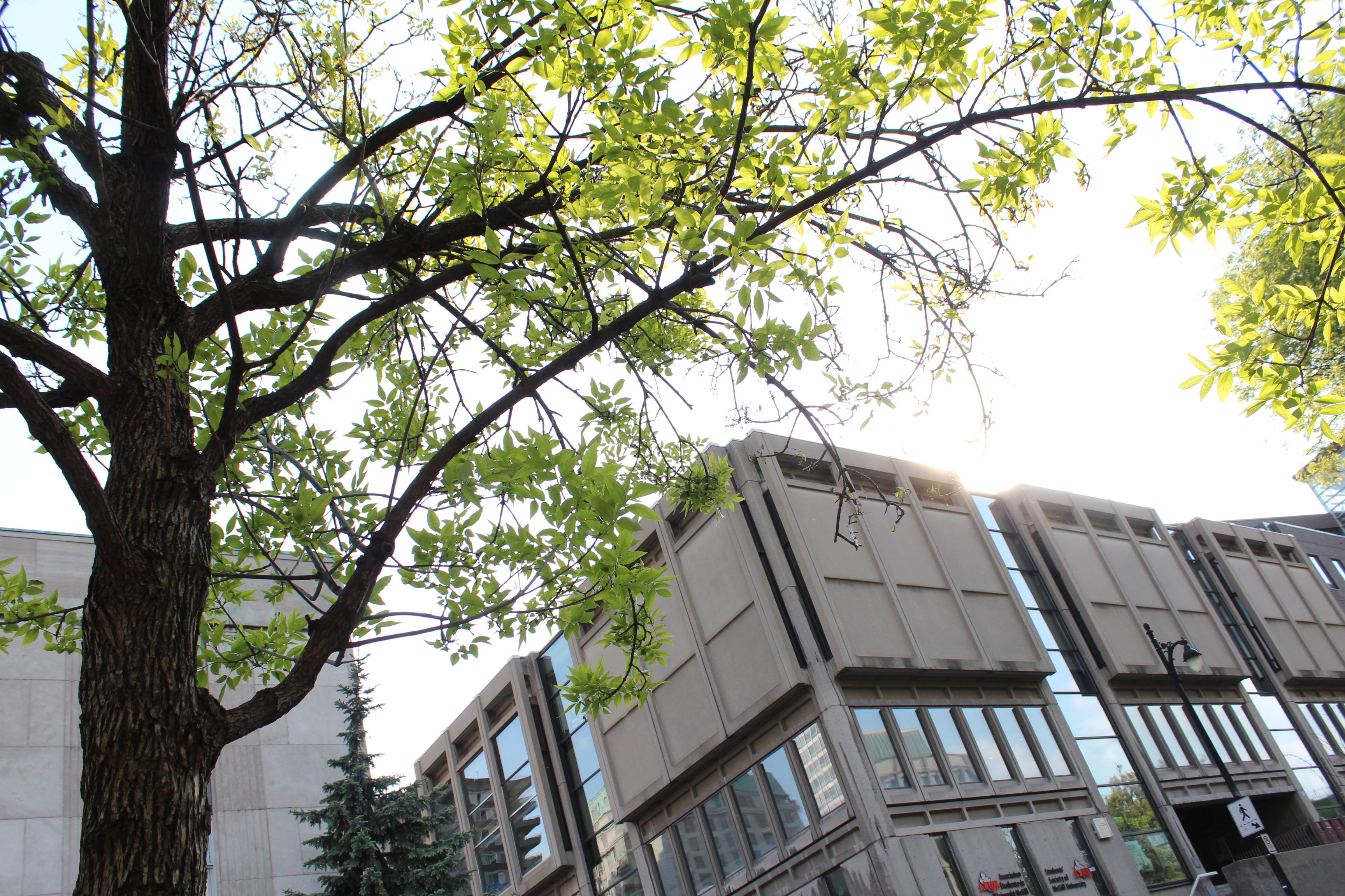 Association étudiante de l'Université McGill