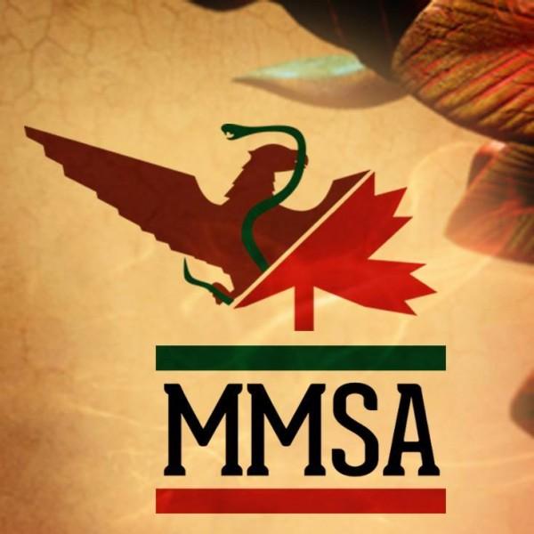 logo_mmsa