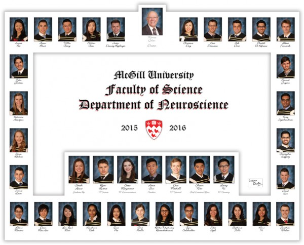 Department-of-Neuroscience-2015-2016-LOWRES
