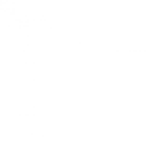 AEUM Logo (White)