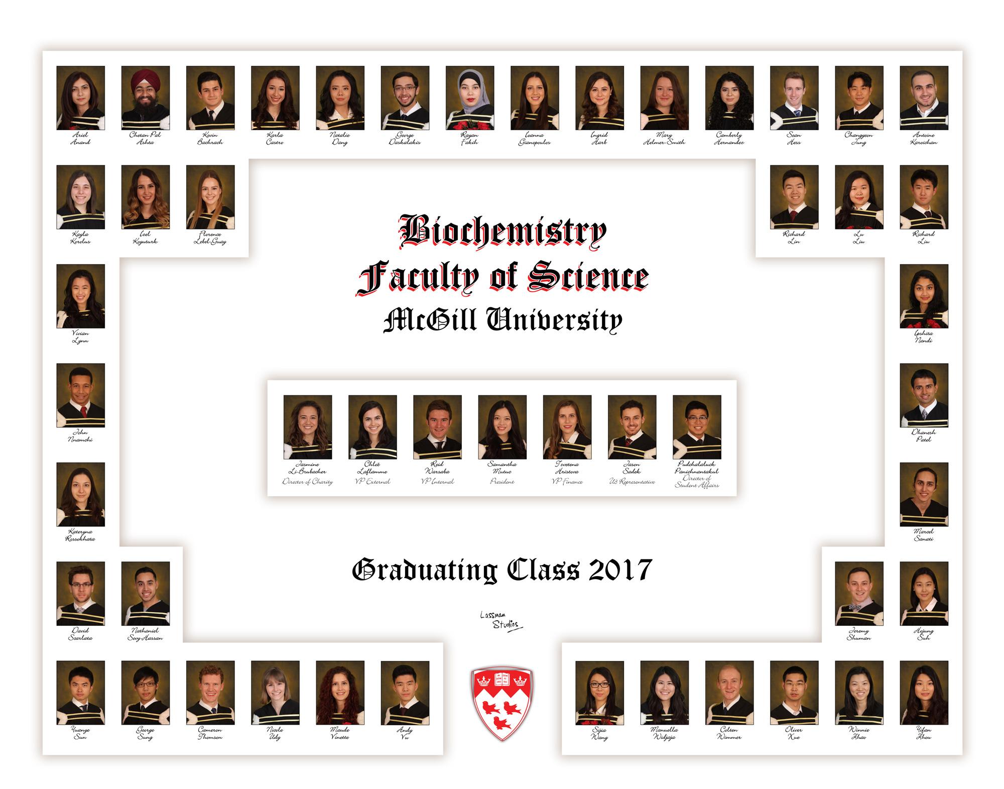 Mosaics-2017-Biochemistry
