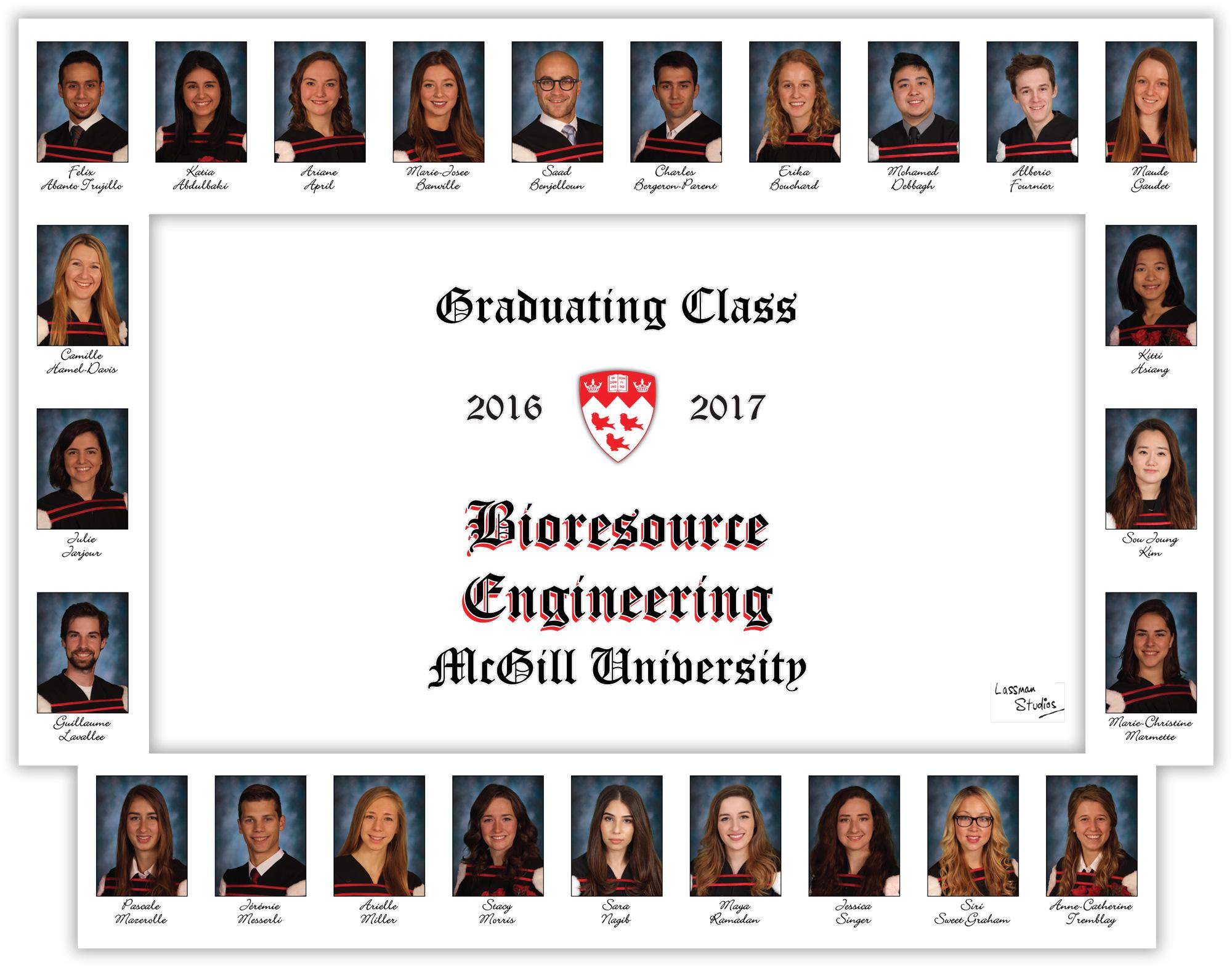 Mosaics-2017-Bioresource-Engineering
